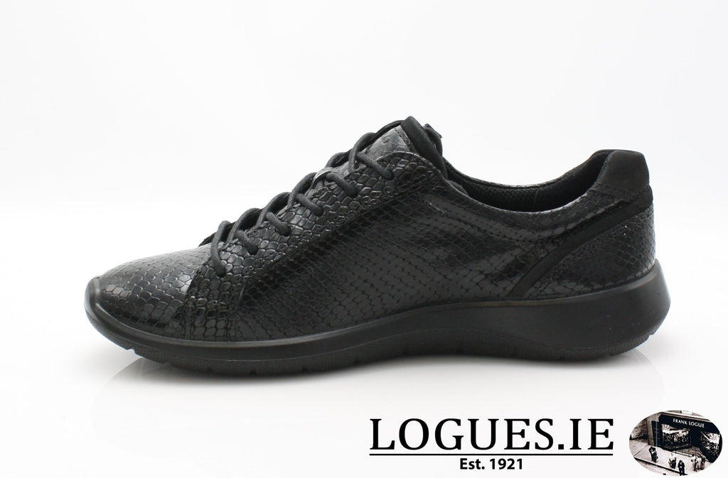 ECC 283073LadiesLogues Shoes51707 / 39