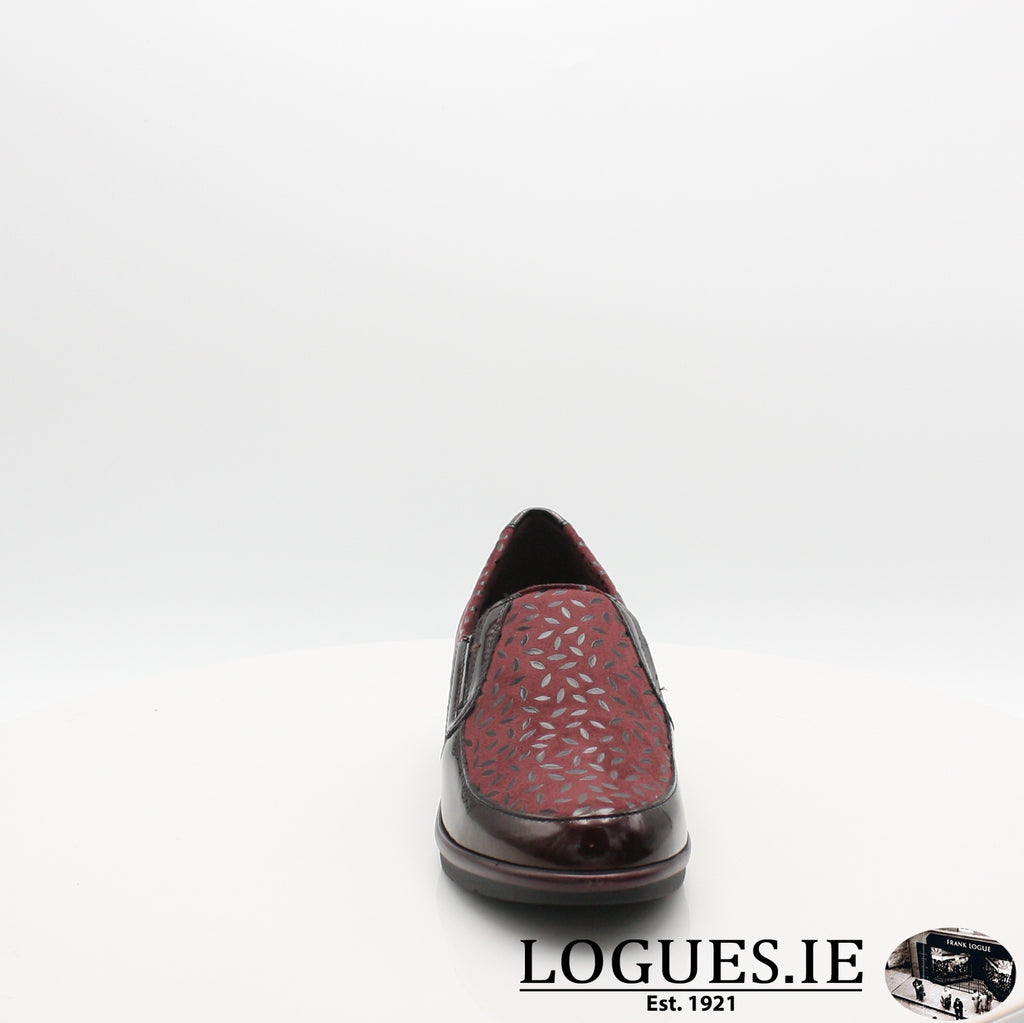 5710 PITILLOS AW19, Ladies, Pitillos shoes, Logues Shoes - Logues Shoes.ie Since 1921, Galway City, Ireland.