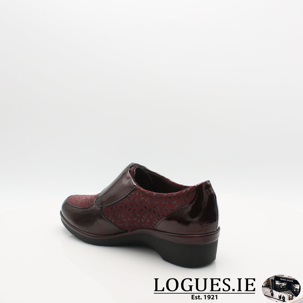 5711 PITILLOS AW19, Ladies, Pitillos shoes, Logues Shoes - Logues Shoes.ie Since 1921, Galway City, Ireland.