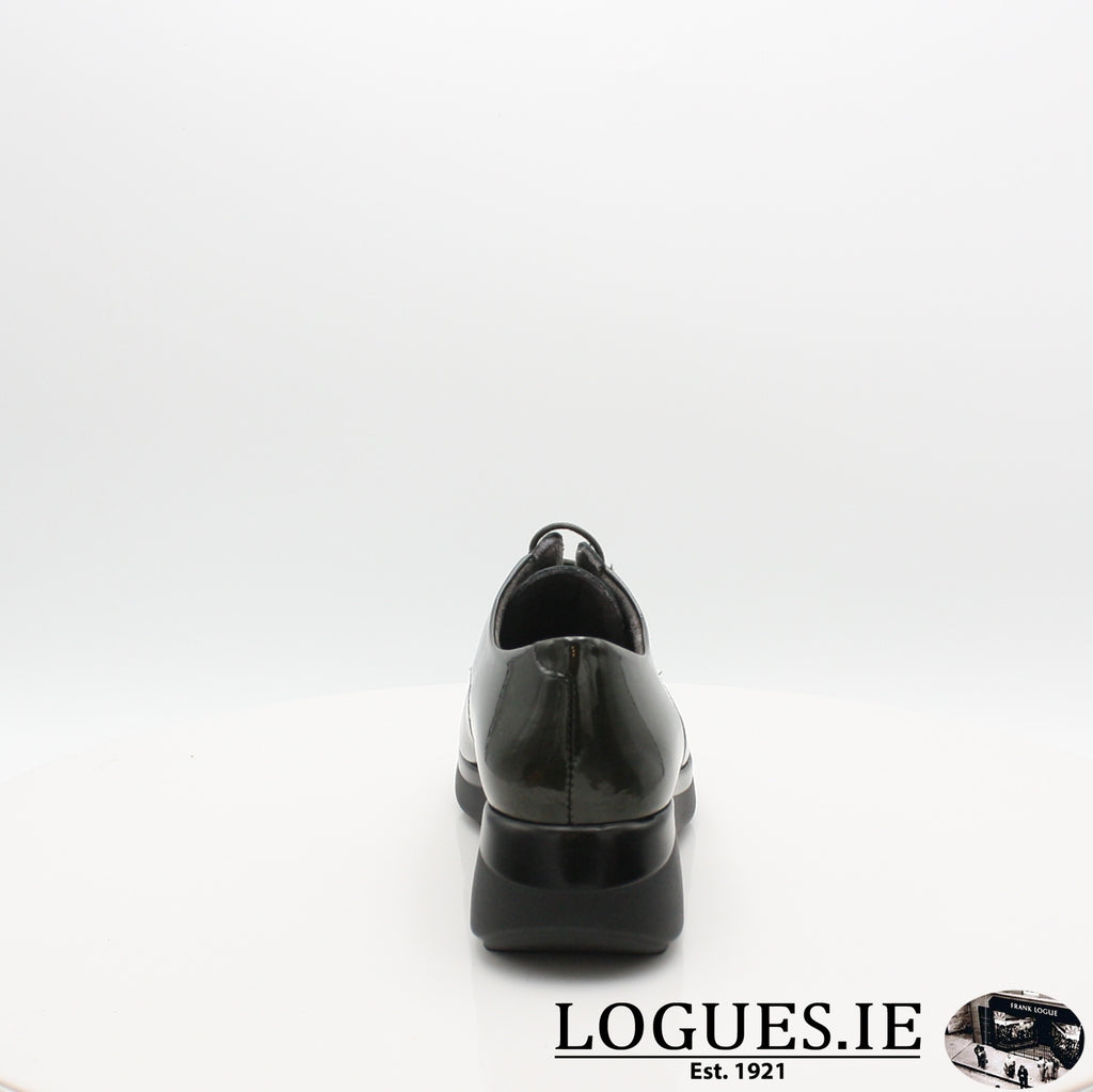 5832 PITILLOS AW19, Ladies, Pitillos shoes, Logues Shoes - Logues Shoes.ie Since 1921, Galway City, Ireland.