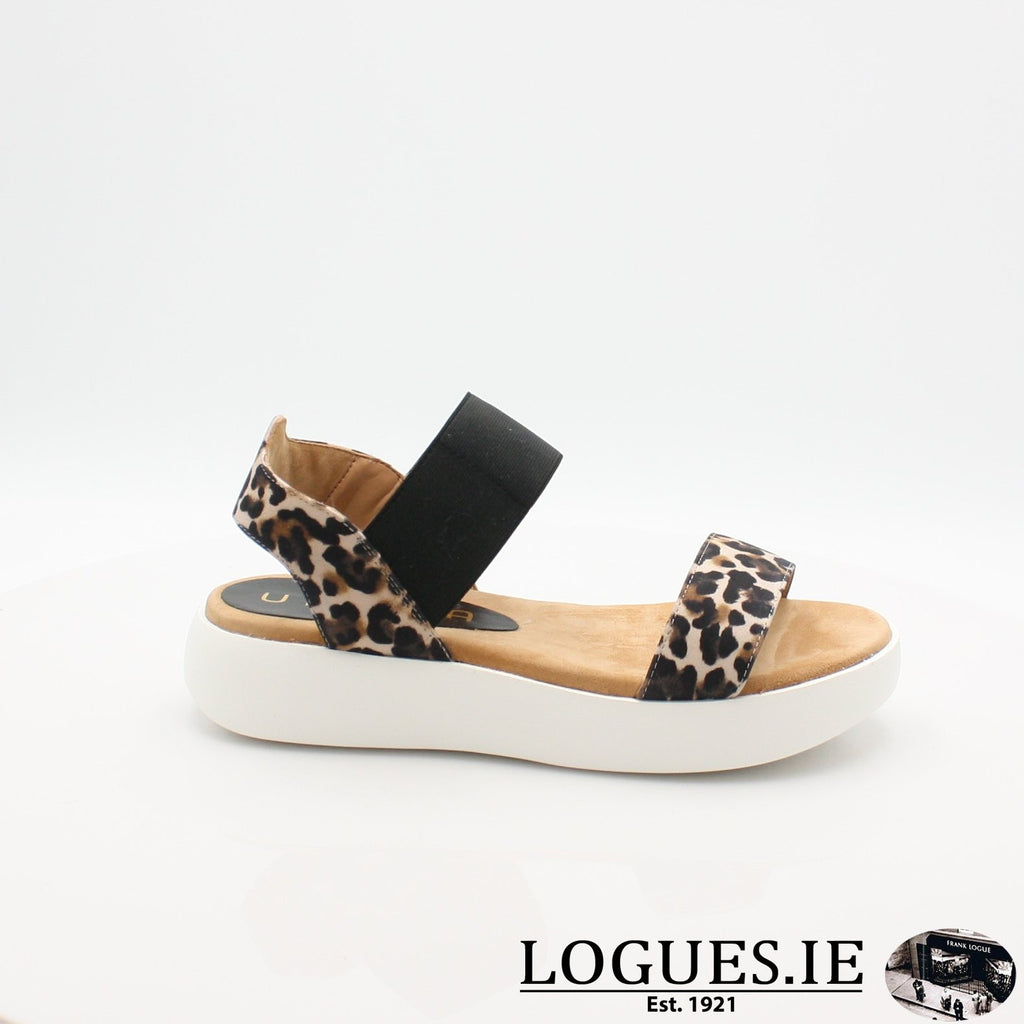 BRIDNI UNISA S19LadiesLogues Shoes
