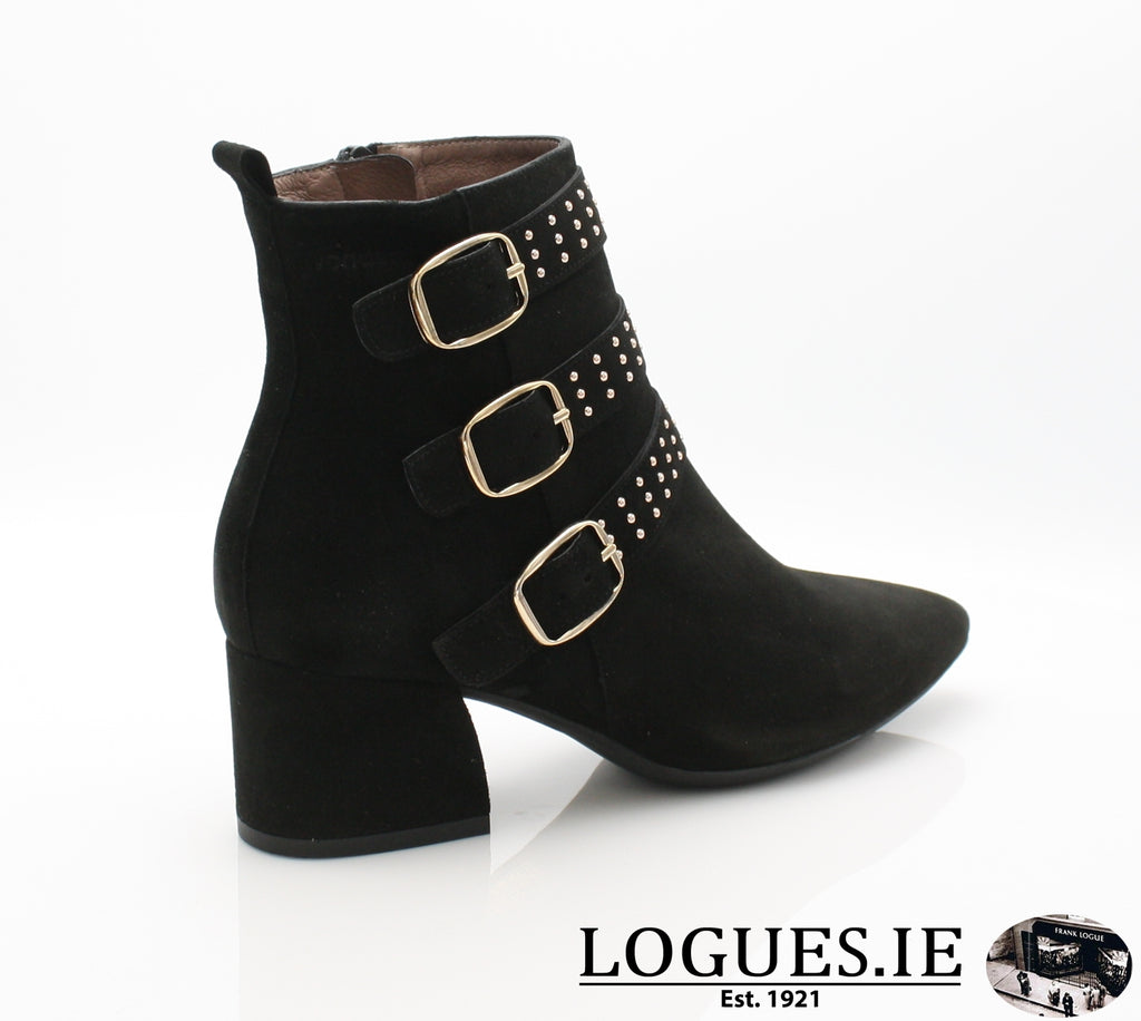 L7202 WONDERS AW18-Ladies-WONDERS-ANTE-NEGRO-36 = 3 UK-Logues Shoes