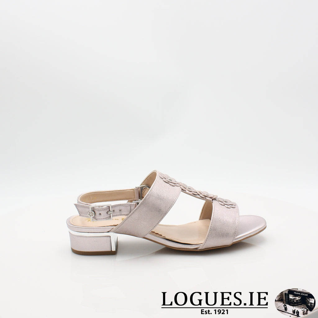 VAN IoneLadiesLogues ShoesBamboo Metallic / 065 / E