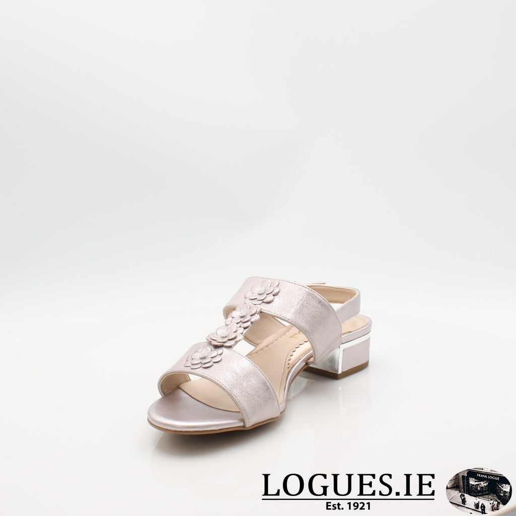 VAN IoneLadiesLogues ShoesBamboo Metallic / 075 / E