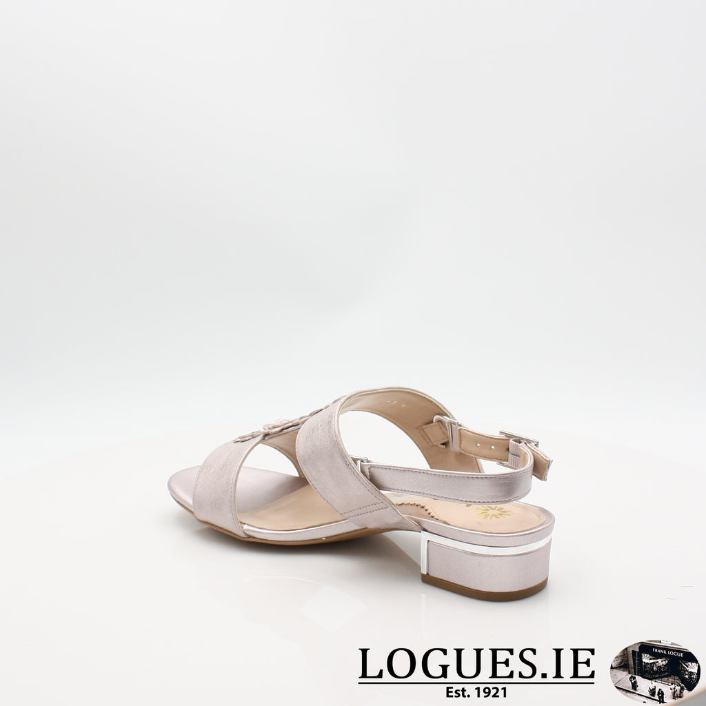 VAN IoneLadiesLogues ShoesBamboo Metallic / 030 / E