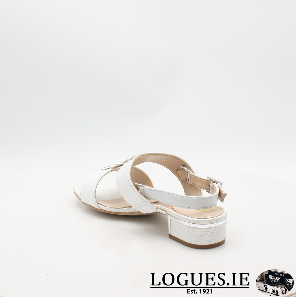 VAN IoneLadiesLogues ShoesBright White / / 030 / E