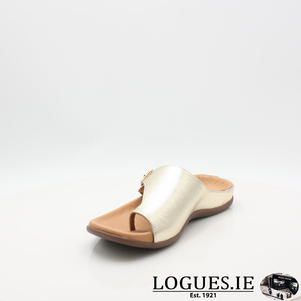 JAVA STRIVE 19LadiesLogues Shoes