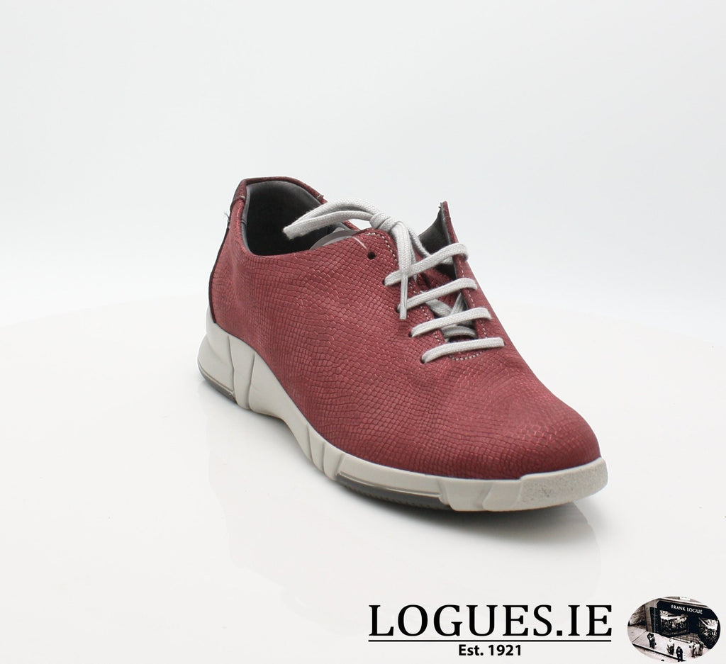 9204 NINA SUAVE A/W18-Ladies-SUAVE SHOES CONOS LTD-GARNET/MONZA-37 = 4 UK-Logues Shoes