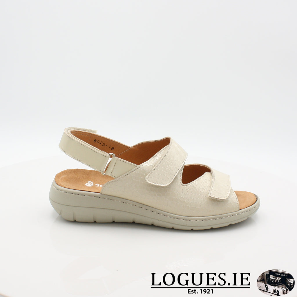 SARA SOFTMODE S19-Ladies-SOFTMODE ORION DISTRIBUTION-BEIGE-4 UK -37 EU - 6 US-Logues Shoes