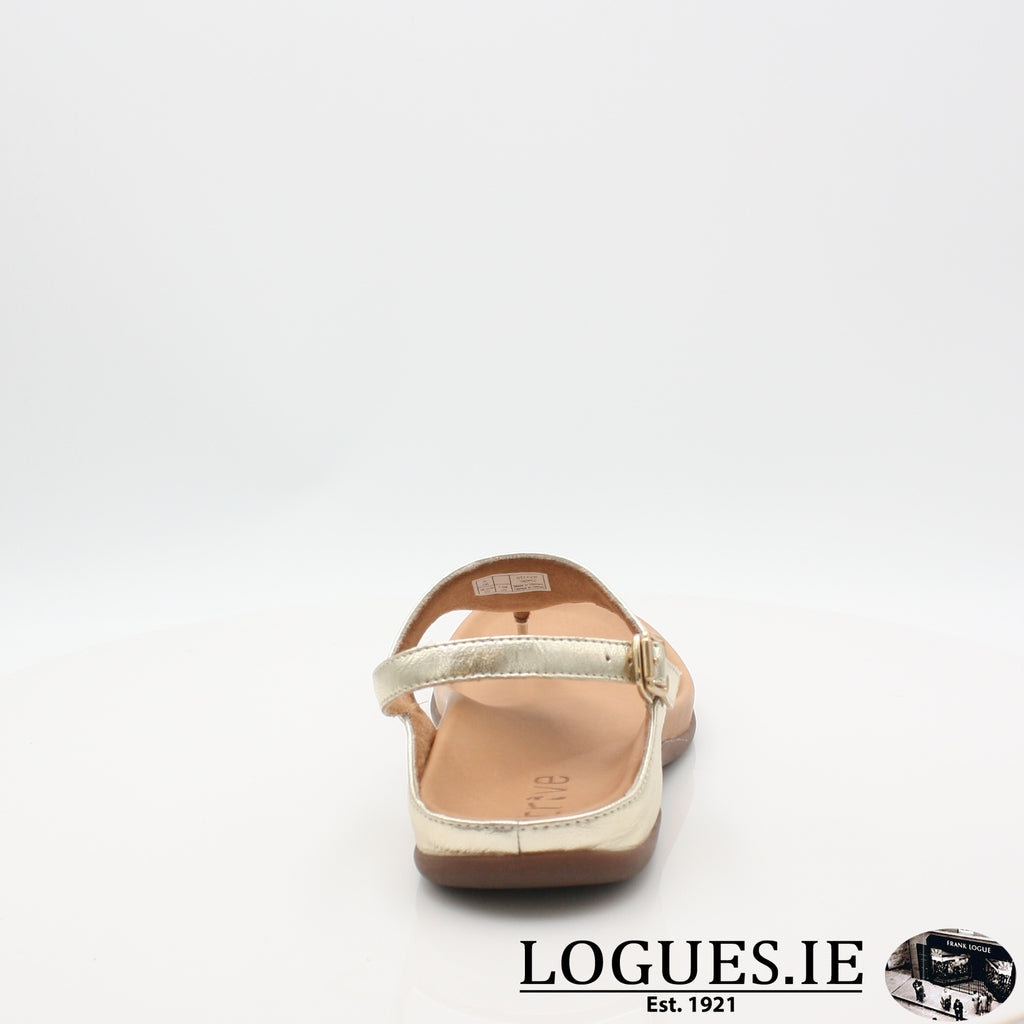 TROPEZ STRIVE 19LadiesLogues Shoes