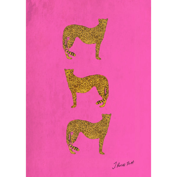 "Signed Print / ""Three Cheetah"""