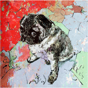 "Signed Print / ""The Little Pug"""