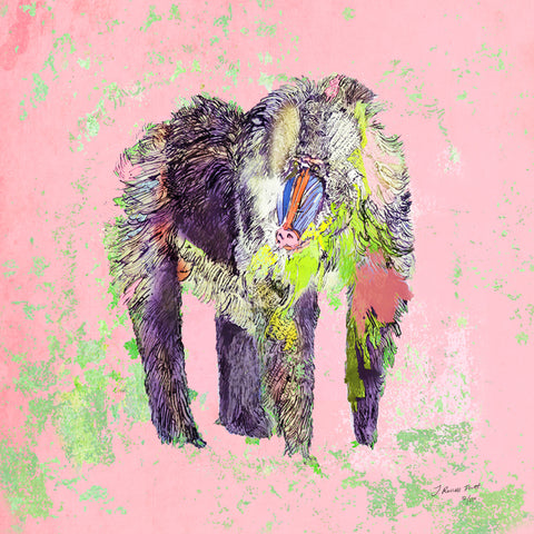 "Signed Print / ""The Pink Baboon"""