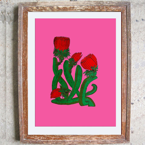 "Signed Print / ""The Cactus"""