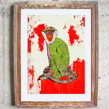 "Limited Edition Print / ""The Staring Monkey"""