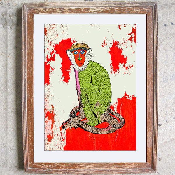 "Limited Edition Print/""The Staring Monkey"""