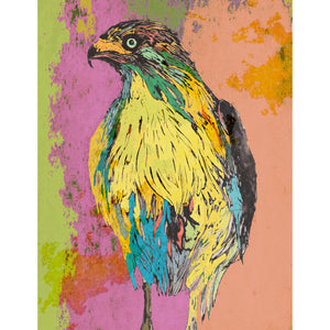 "Signed Print / ""The Multicoloured Eagle"""