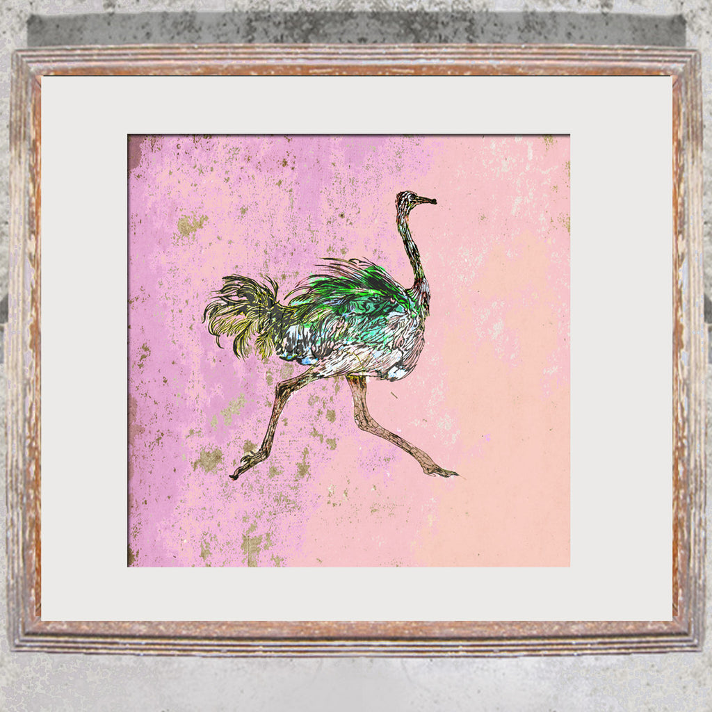 "Limited Edition Print / ""The Prancing Ostrich"""