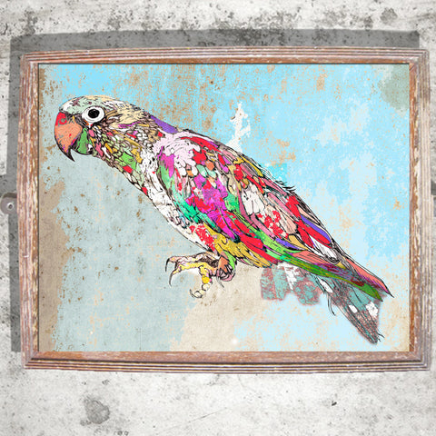 "Signed Print / ""The Tropical Parrot"""