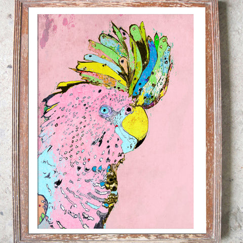 "Signed Print / ""The Punky Parrot"""