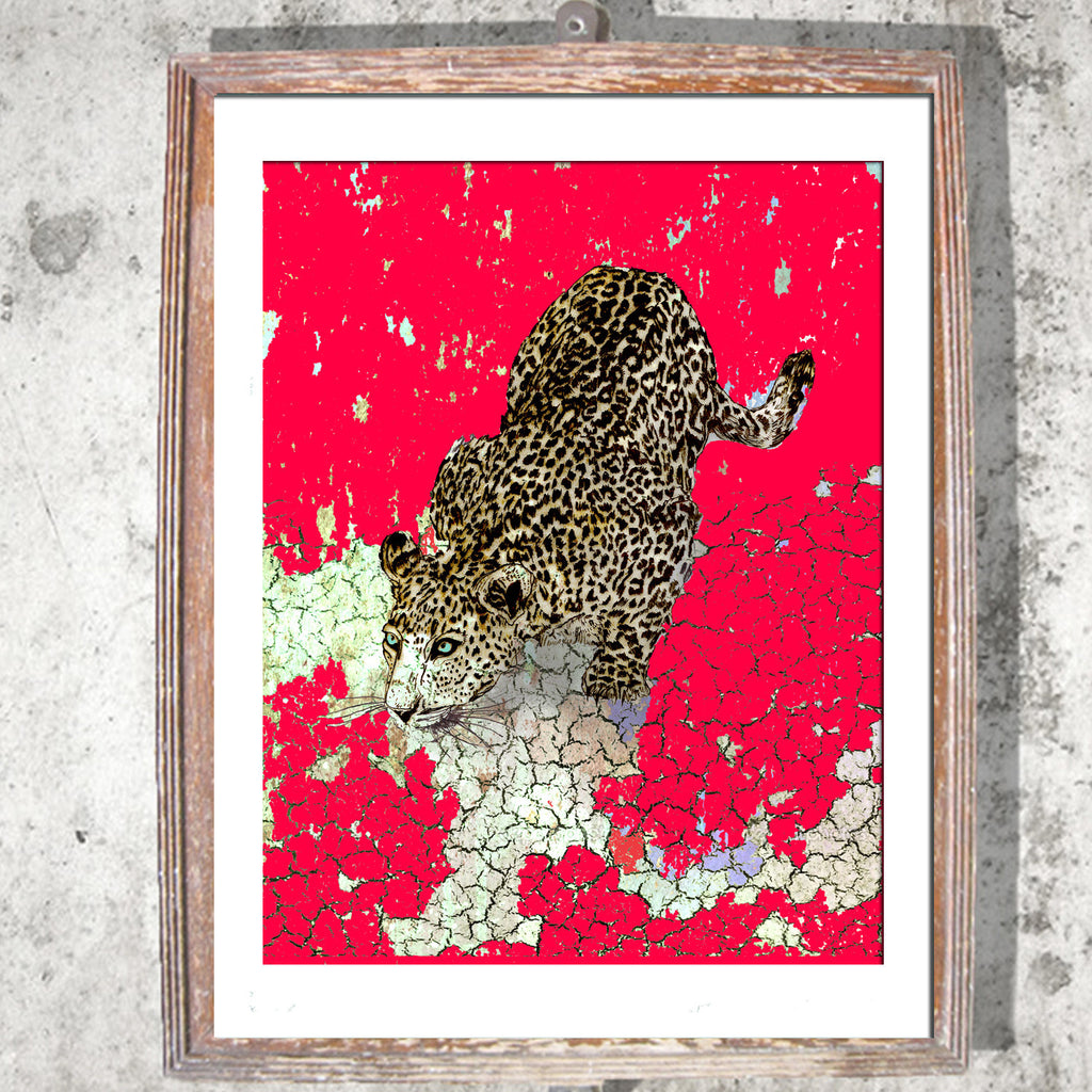 "Limited Edition Print / ""The Pouncing Leopard"""