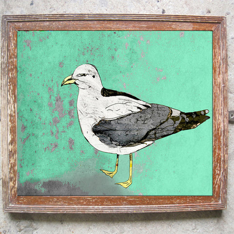 "Signed Print / ""The Condescending Seagull"""