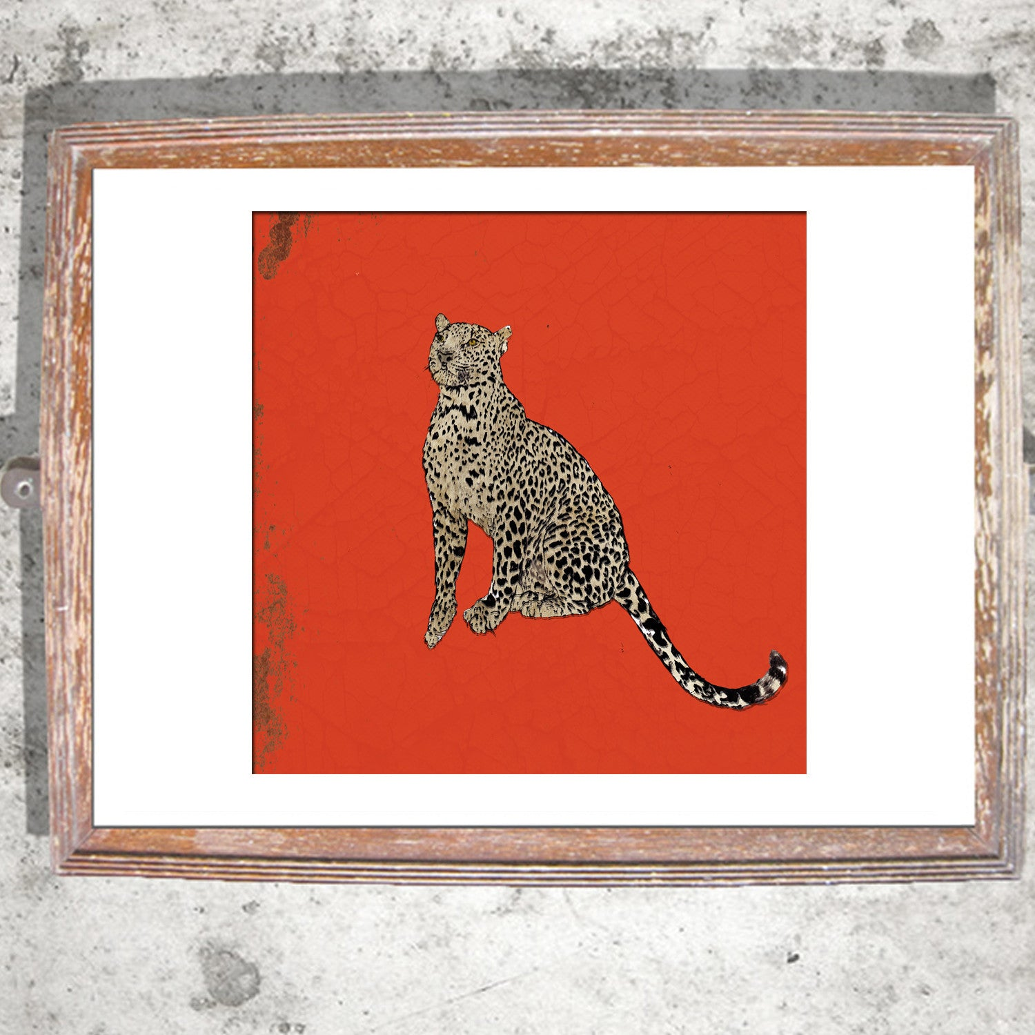 "Signed Print / ""A Sitting Leopard"""