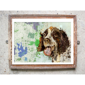 "Signed Print / ""The Springer Spaniel"""
