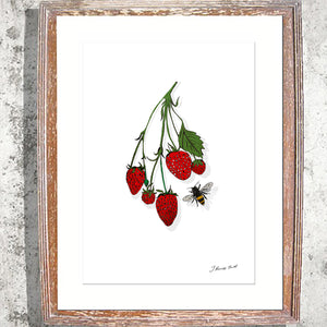 "Signed Print/ ""The Strawberry Vine"""