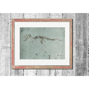 "Limited Edition Print / ""The Hunting Dinosaur"""