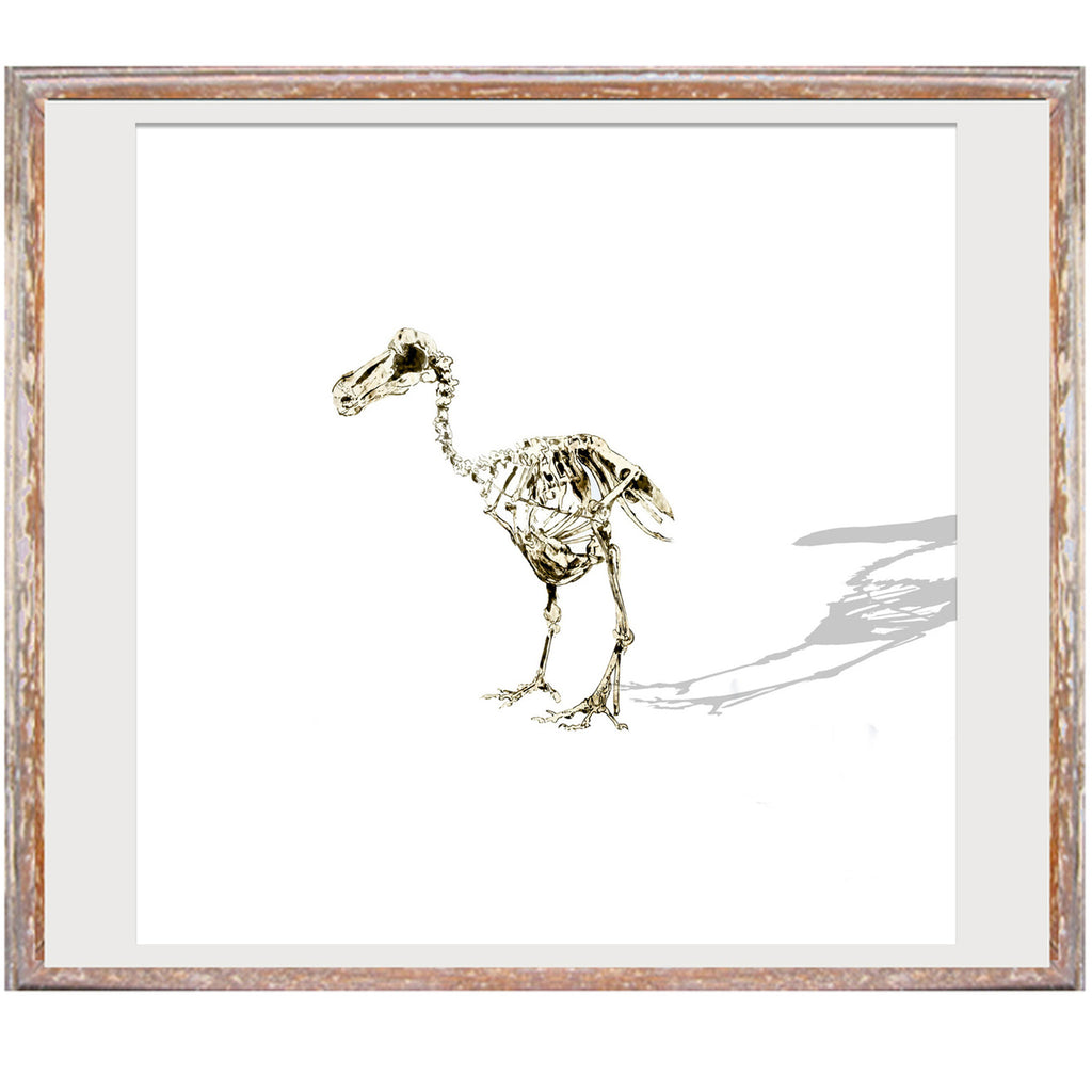 "Limited Edition Print / ""The Lonely Dodo"""