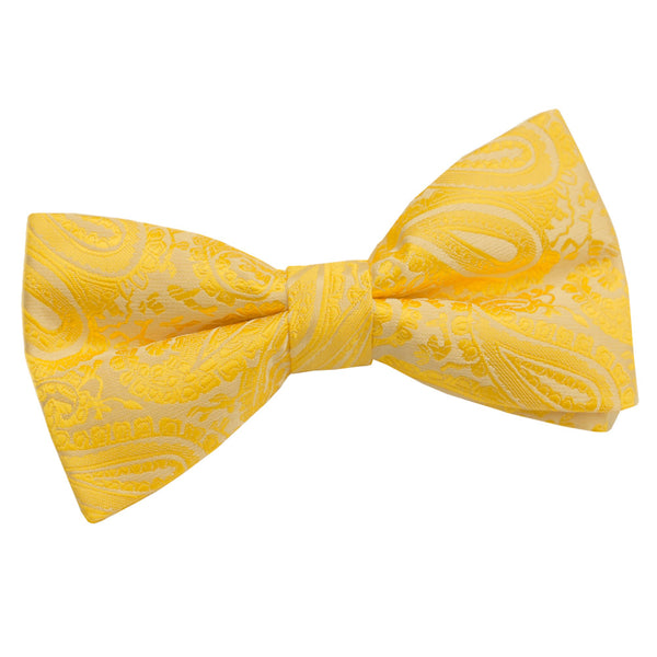 Paisley Pre-Tied Bow Tie in 18 colours