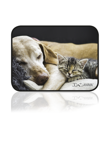 SLEEPING CAT AND DOG PLACEMATS|TAPIS DE REPAS CHIEN ET CHAT ENDORMIS