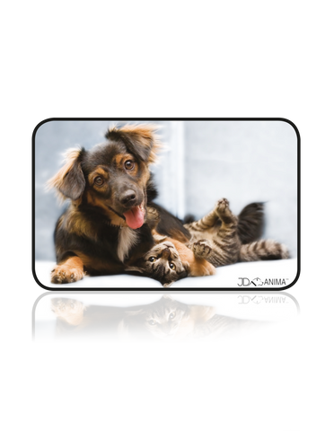 FRIENDS DOG AND CAT PLACEMATS|TAPIS DE REPAS AMIS CHIEN ET CHAT