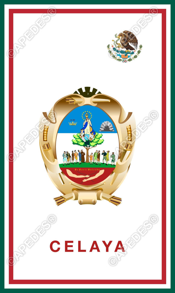 Celaya City Mexico Decal Sticker 3x5 inches