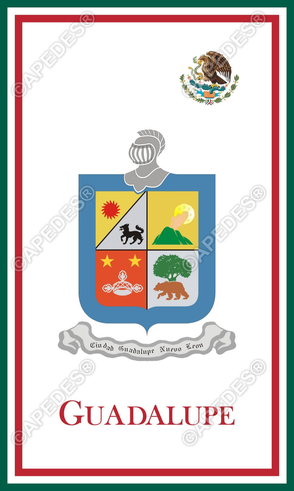 Guadalupe City Mexico Decal Sticker 3x5 inches
