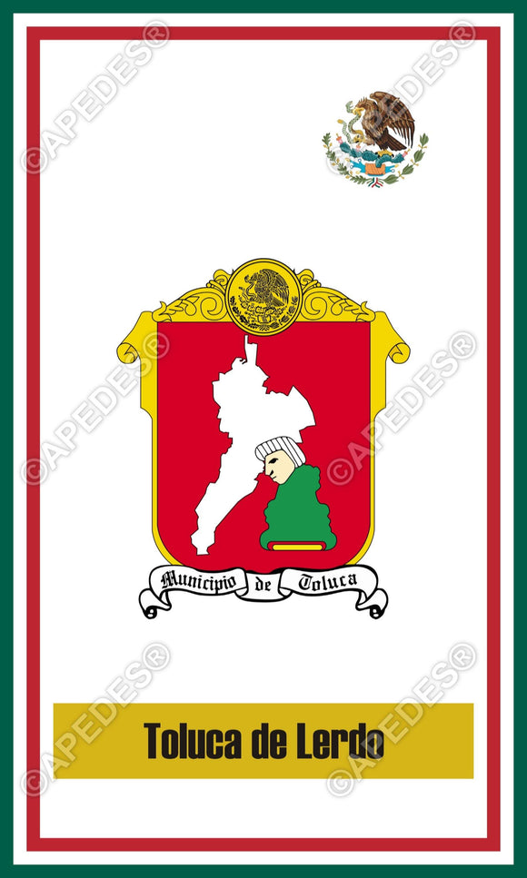 Toluca City Mexico Decal Sticker 3x5 inches