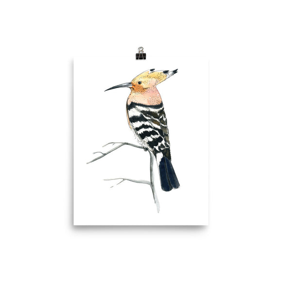 The hoopoe (Удод by Nataly Minchuk) Poster