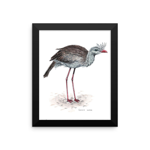 Cariama cristata (by Nataly Minchuk) Framed poster
