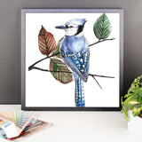 Blue jay (by Nataly Minchuk) Framed poster