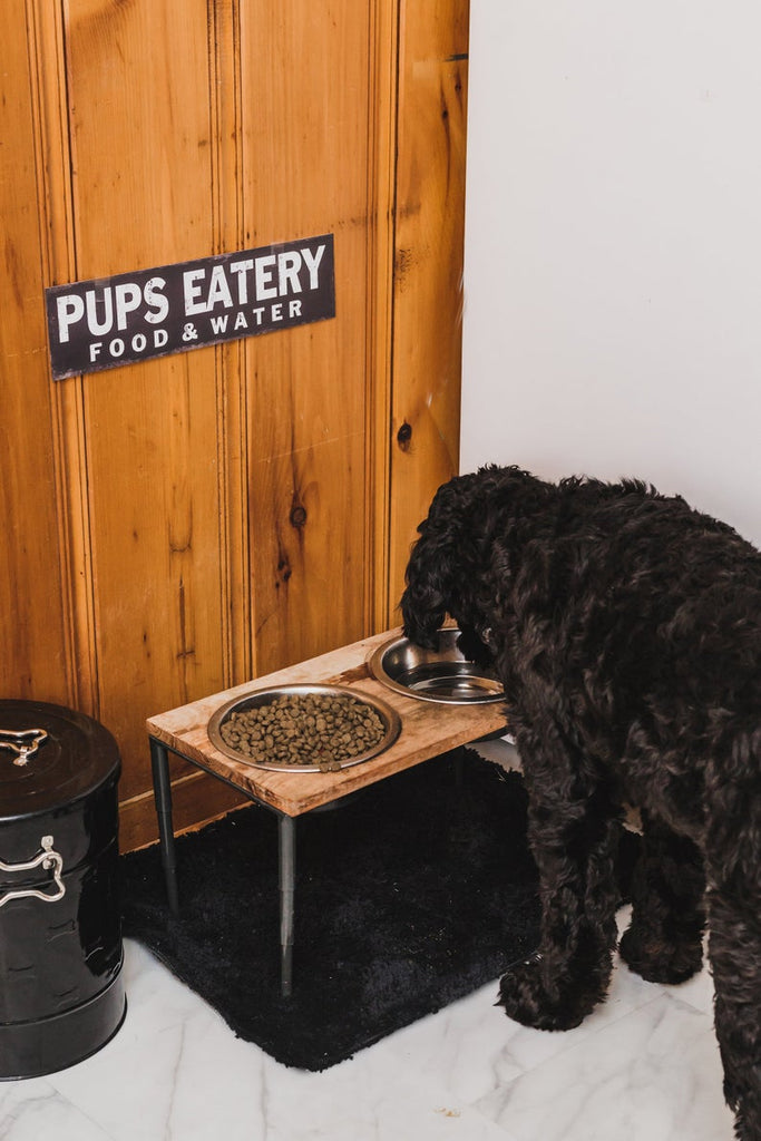 Pup's Eatery | Black & White