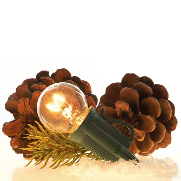 Event Lighting_Transparent Incandescent Patio Lights  |  Christmas World