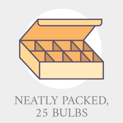 Click here for 25_bulbs pro tips.