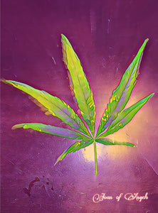 Cannabis Glowing on Purple