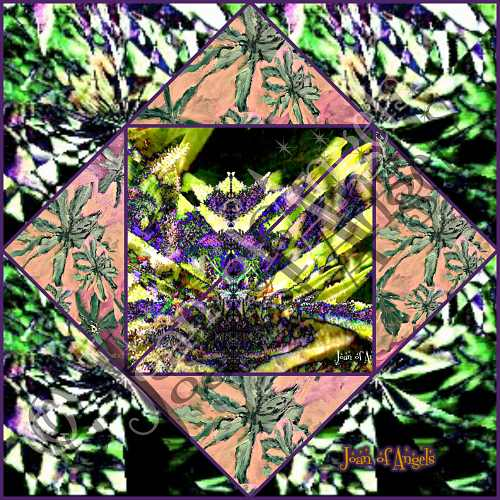 Purple Cannabis Passions Reveal Hidden Delights Giclee Print