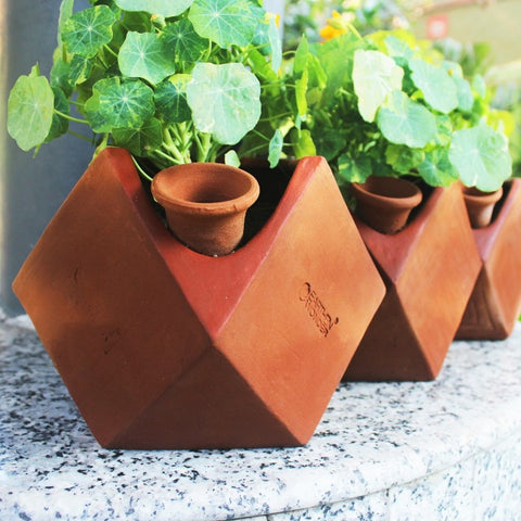 D'mond Planters with Deep Root Watering Funnel