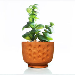 Planters : HexaDeco: 3pcs Decorative Terracotta Planter