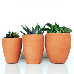 Planters : SET OF 3: Decorative Terracotta Planter