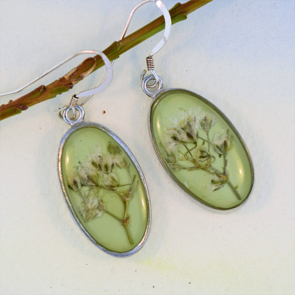 Oval Earrings with Baby's Breath flower