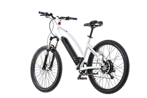 Buy ProdecoTech Genesis RS Full-Size Electric Bike at